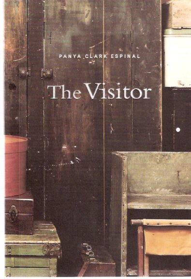 Image for Panya Clark Espinal - The Visitor:  Oakville Galleries 21 April - 10 June 2001
