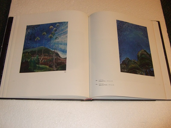 Image for EMILY CARR:  New Perspectives on a Canadian Icon / National Gallery of Canada / Vancouver Art Gallery