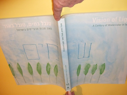 Image for Vision of Light:  A Century of Watercolor in Israel / The Israel Museum, Jerusalem ( Text is in English and Hebrew ) ( Art / Artists / Israeli / Jewish )