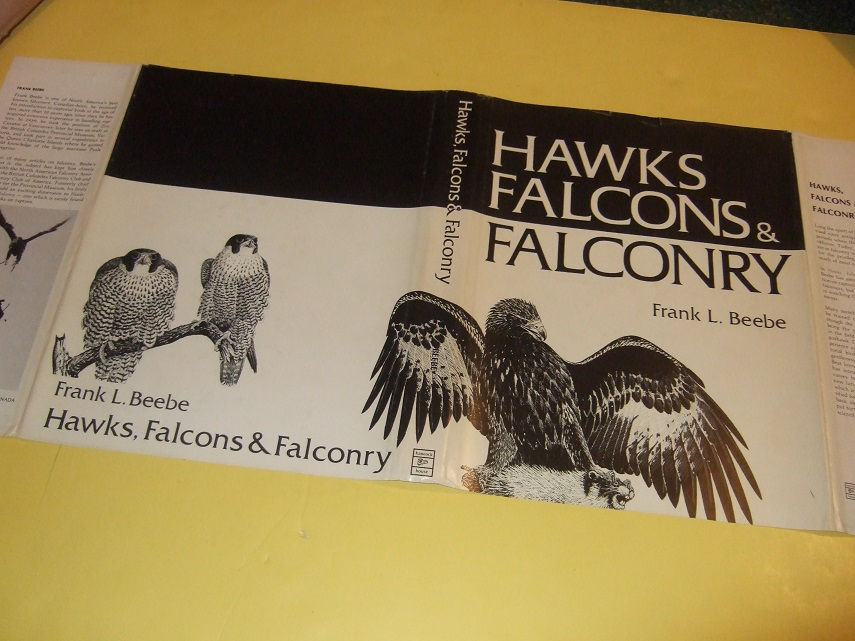 Image for Hawks, Falcons & Falconry -by Frank L Beebe / Hancock House (inc. Goshawk, Golden Eagle, American Kestrel, Merlin, Prairie Falcon; Gyrfalcon; Peregrine; Ferruginous Hawk; Etc; Equipment; Training; Eyess vs Passager; Glossary, etc)