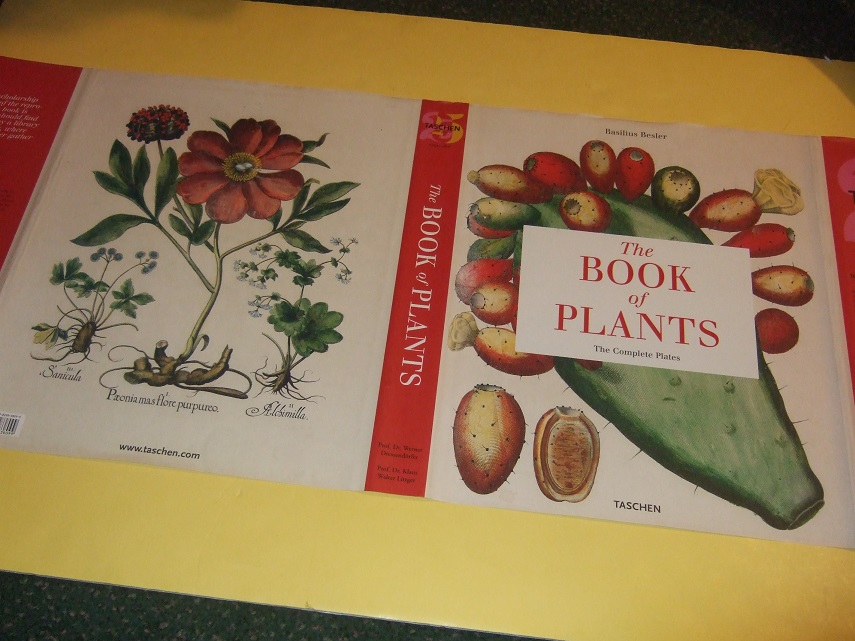 Image for The Book of Plants: The Complete Plates -by Basilius Besler ( Hortus Eystettensis / Garden of Eichstätt - Taschen Facsimile Edition )